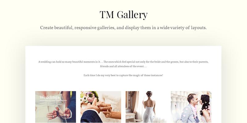 Focussity - Wedding Photography WordPress Theme